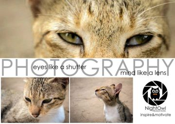 layout-Inspire-and-Motivate-by-nightowl-photography-and-designs