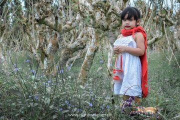 Little-Red-Riding-Hood-by-nightowl-photography-and-designs(10)