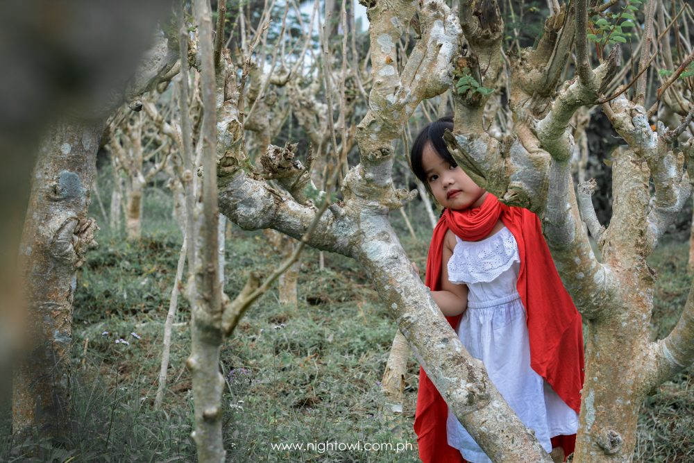 Little-Red-Riding-Hood-by-NightOwl-Digital-Photography-and-Designs (11)