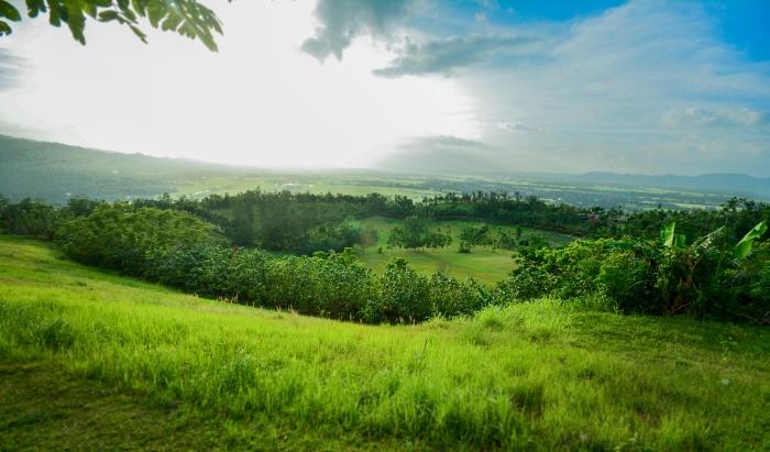 kawa-kawa-hill-at-ligao-city